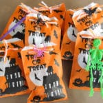 Halloween Treat Bags for Children with Allergies (Teal Pumpkin Project)