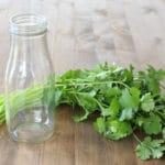 How to Store Fresh Cilantro