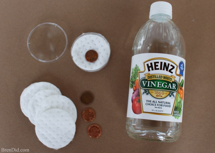 Chemistry for Kids: Penny Change Experiment - Bren Did