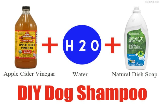 DIY Dog Shampoo All-Natural Non-Toxic