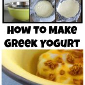 Learn how to make Greek yogurt, easy Greek Yogurt, Greek yogurt recipe: save money and feed your family preservative free!