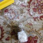 Natural Carpet Deodorizer and Room Freshener