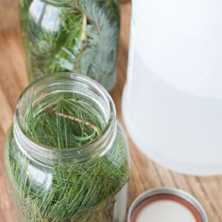 Evergreen scented vinegar for cleaning can be made with just two simple ingredients: vinegar and fresh evergreens. Learn how to make this easy pine scented cleaner today!