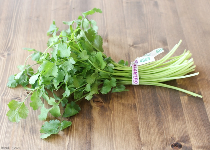 Love cooking with fresh herbs, but hating hate wasting leftovers? There is an easy storage trick that can help leafy herbs such as cilantro last up to 6 weeks! Learn more at BrenDid.com.