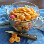 Wild Plum Recipes: Plum Jelly & Plum Fruit Leather