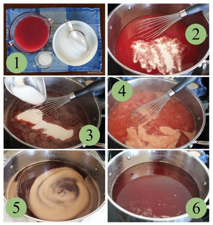 Easy Wild Plum Jelly Recipe Bren Did