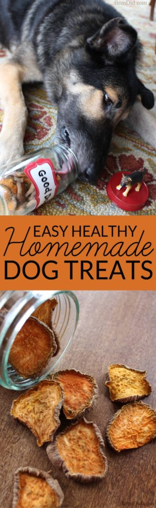Commercial dog treats can be full of corn or other questionable ingredients. Make your own easy homemade dog treats with this one ingredient tutorial and feed your pet healthy homemade dog treats.