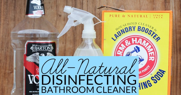 Natural Bathroom Disinfectant Cleaner Bren Did