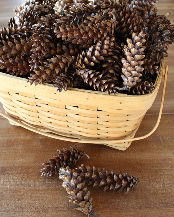 How To Prepare Pine Cones For Crafts