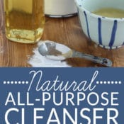 This Natural All-Purpose Cleanser is a workhorse! It is a bathtub and sink cleaner, a toilet cleaner, a glass top stove cleaner, an oven cleaner, a cutting board cleaner, a dishwasher detergent, a pot & pan cleaner, a laundry stain treater, a carpet stain remover, a tile and grout scrub and more! Plus it is an all-natural, green cleaner that is so gentle you can use it to exfoliate! Get the easy, 2-ingredient recipe on BrenDid.com!
