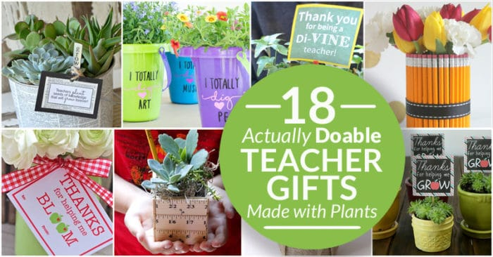 Lovely plant gifts for teachers