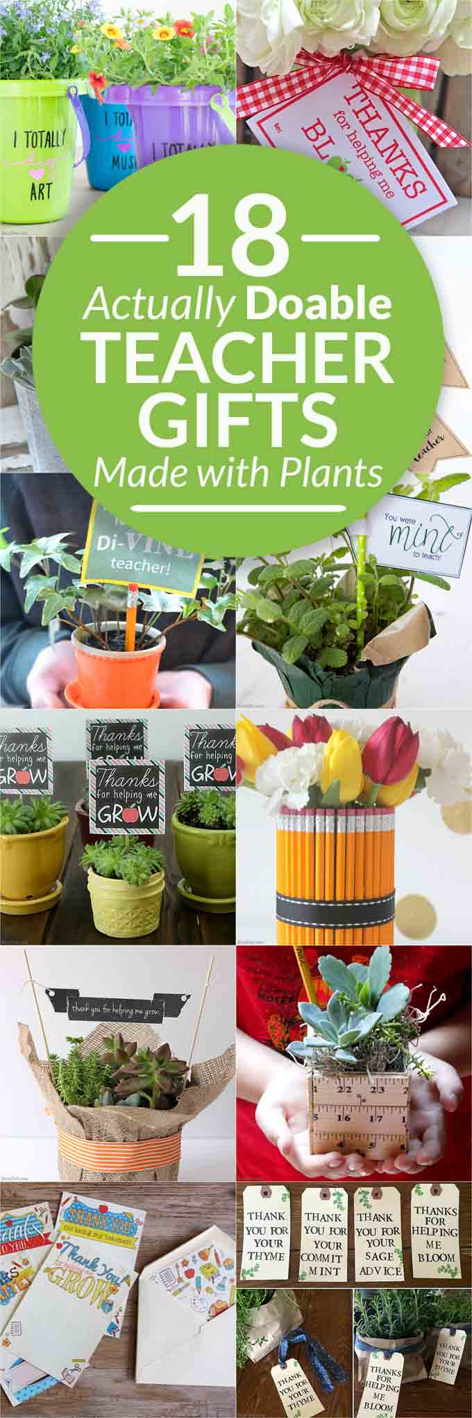 adorable teacher gifts from plants from Bren Did
