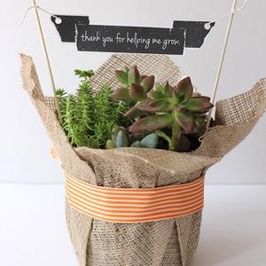 Mini banner plant garland