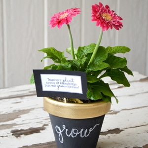 chalkboard flower pot for teacher