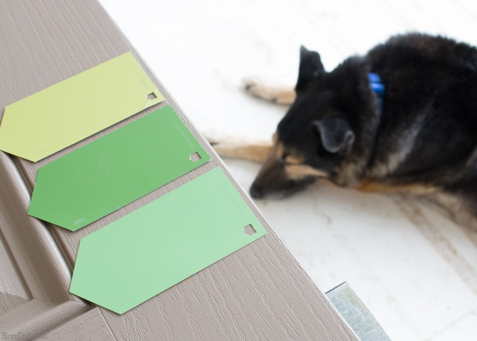 Lowes Green Paint Swatches