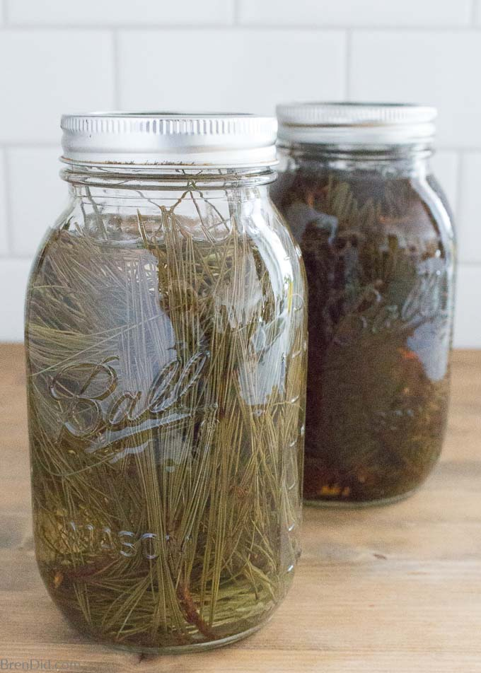 Evergreen scented vinegar for cleaning steeping
