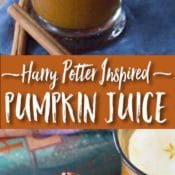 Harry Potter Pumpkin Juice Recipe Pin