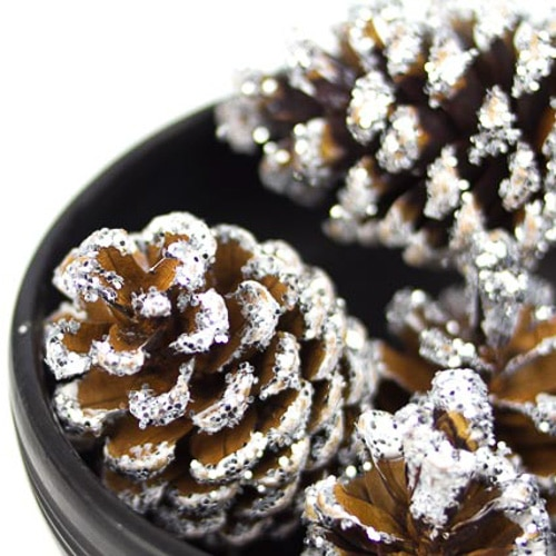 snow covered pine cones glitter