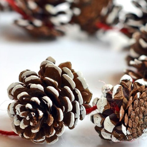 snow covered pine cones craft paint