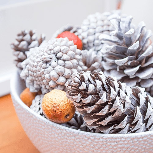 snow covered pine cones spray paint