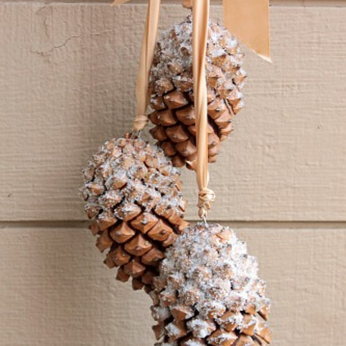 snow covered pine cones epsom salt glue