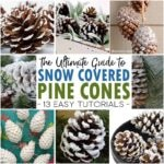 How to Make Snow Covered Pine Cones – An Ultimate Guide