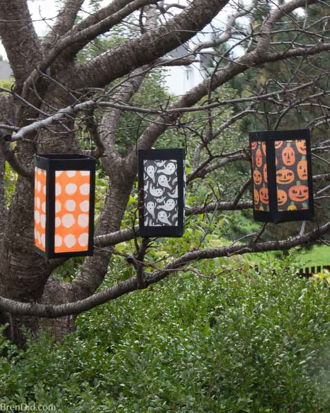 paper lanterns hanging in a tree